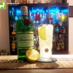 Rezept Gin-Fizz von Kochbock.de